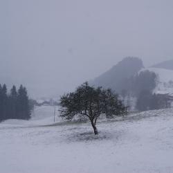Tirol-Kreis Reise 2013_14